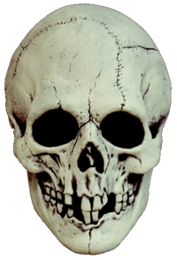 Skull black and white horror mask